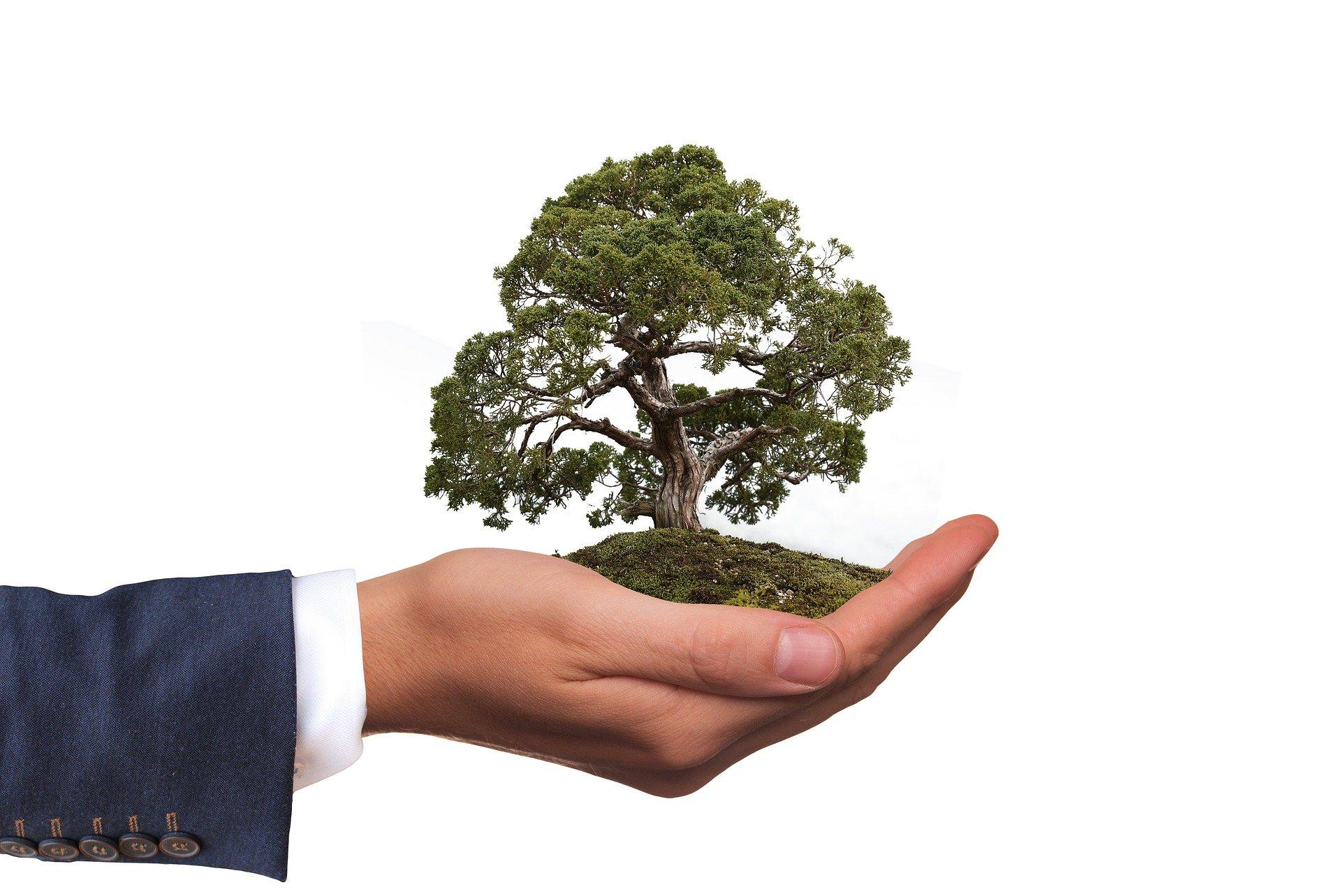 Serviços de consultoria ambiental baseados na ISO 14001